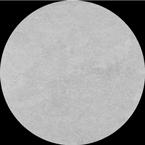 plytka-tacoma-white.png