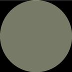 zielony.png